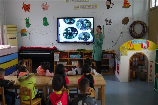 幼儿园的孩子们通过观察,讨论,猜谜,制作等一系列活动,了解蔬菜特性的